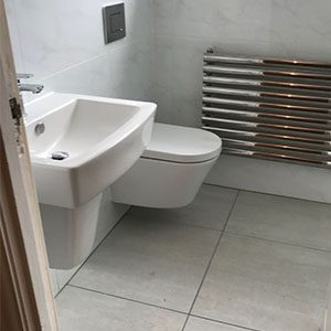 White and grey toilet and sink