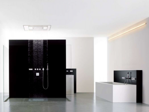 Large black and white shower in bathroom