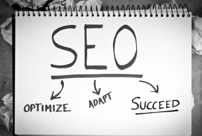 seo optimise adapt succeed